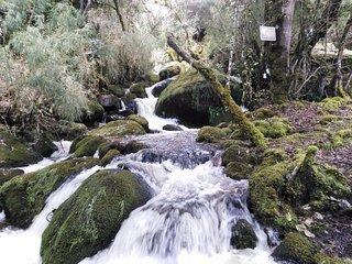 Reserva Natural El Chochal de Siecha