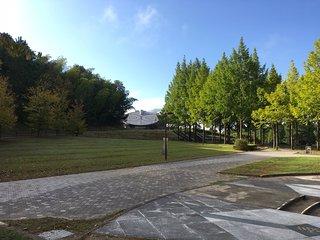 Japan Heso Park