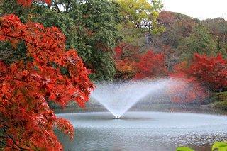 Takaoka Kojo Park