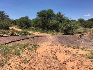 Dinosaur Tracks - National Monument NAMIBIA