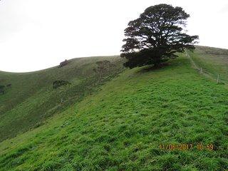 Mount Noorat