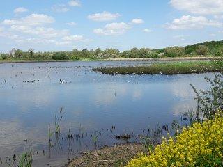 Réserve Ornithologique de Grand-Laviers