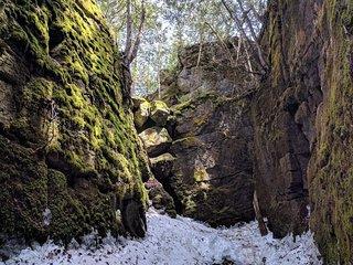 Nottawasaga Bluffs Conservation Area