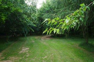 Millennium Arboretum