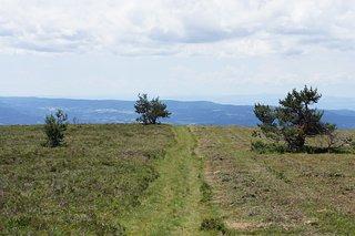 Livradois-Forez Regional Natural Park