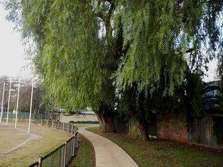 Victoria Road Reserve