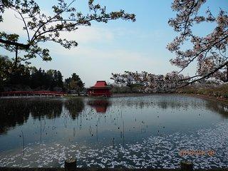 Saruka Park