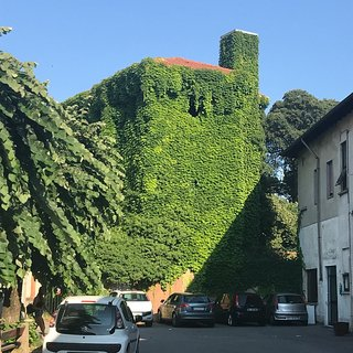 Villa Bosi