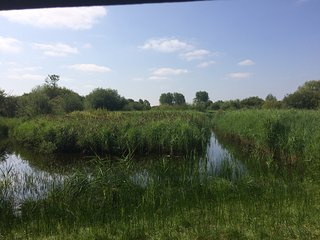 RSPB Fowlmere Nature Reserve