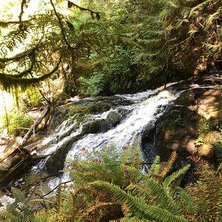 Ludlow Falls Interpretive Trail