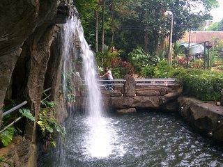 Ayer Keroh Recreational Forest