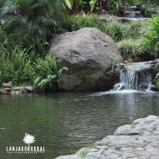 El parque del Salao es un lugar que crea un ambiente íntimo armonizado por el sonido del agua y de las aves, un lugar para disfrutar de la tranquilidad y la naturaleza que nos ofrece además un sitio lleno de actividades turísticas y culturales para nuestros visitantes, como el Festival de Flamenco en julio o el Festival de rock a finales de agosto. 👉👉👉 www.lanjaronrural.com