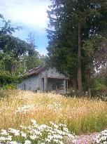 Squalicum Lake Cottage