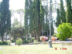 The gardens near the pool