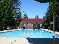 Lower pool area....