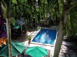 Picture of the pool in garden area