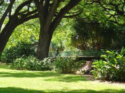 Lili'uokalani Botanical Garden
