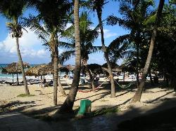 Hammocks on beach