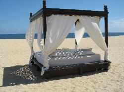Bed on the hotel beach