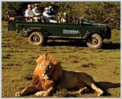 safari to remember
