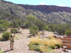 ‪Alice Springs Desert Park‬