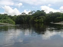 Parco nazionale di Corcovado