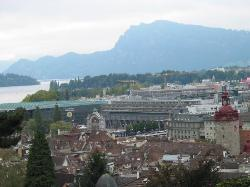 Lucerne (1615849)