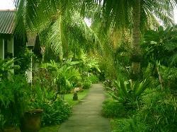 Beautifull garden