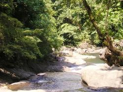 Igpasungaw River, Antique, Panay, Philippines (1637257)