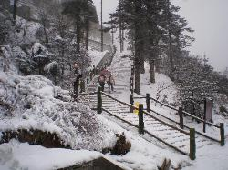 Mount Emei (Emeishan)