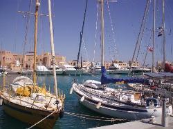 Abu Tig Marina (1725469)