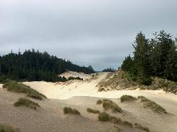 ‪Oregon Dunes National Recreation Area‬