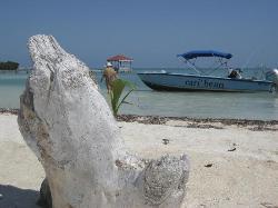 Cari'Bean Tours Belize