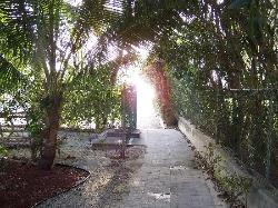Path to beach from Comfort Suites
