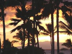 sunset in Maui (1987647)