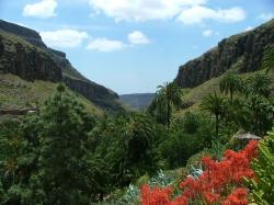 valley at palmitos (16812215)