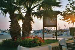 Shot from restaurant at marina