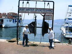 Blue Water Sportfishing
