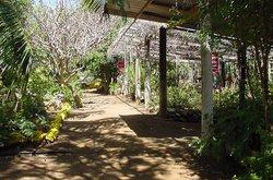 Den Paradera - Dinah's Botanic & Historic Garden