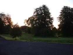 Dawn at roundwood