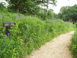 Eloise Butler Wildflower Garden and Bird Sanctuary