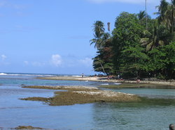 Beach at Puerto Viejo (17035607)