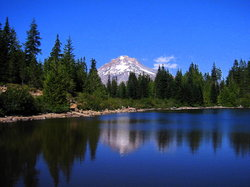 ‪Mount Hood National Forest‬