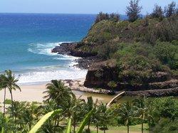 国家热带植物园