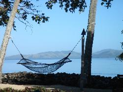 Relaxing hammock in the shade.