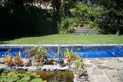 The pool & grounds of Los Artistas