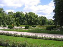 Kozlowka Palace grounds (17333366)