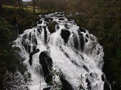 Swallow Falls (Rhaeadr Ewynnol)