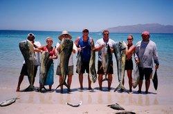 Tortuga Sportfishing