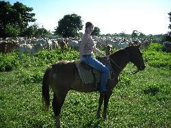 Gita a cavallo tra le mandrie